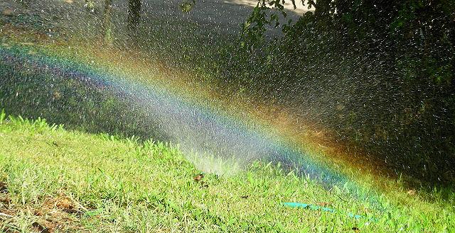 sprinklerainbow