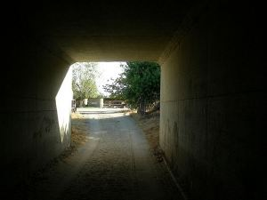 tunnelview