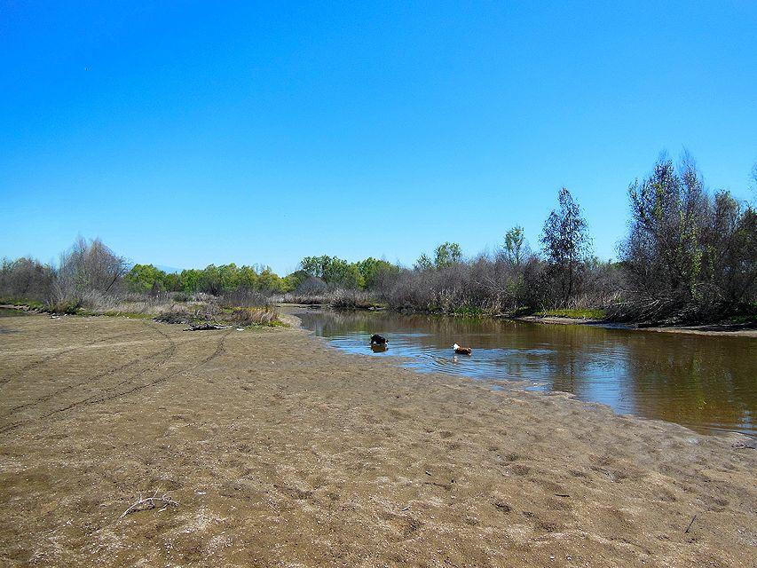 downriver2