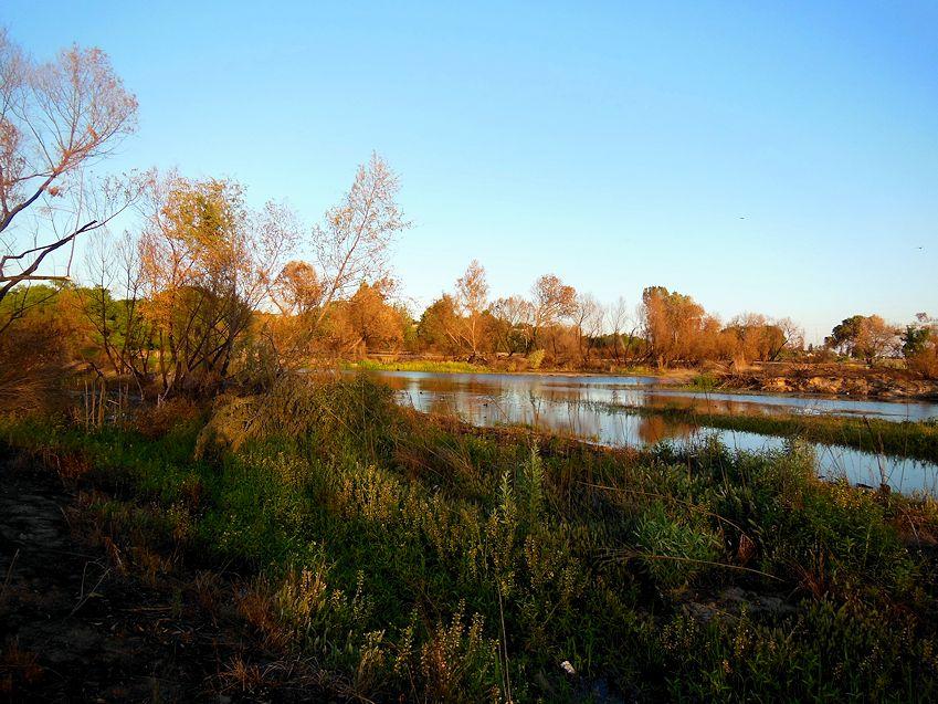 upriver