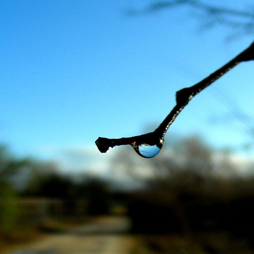 raindropedit3