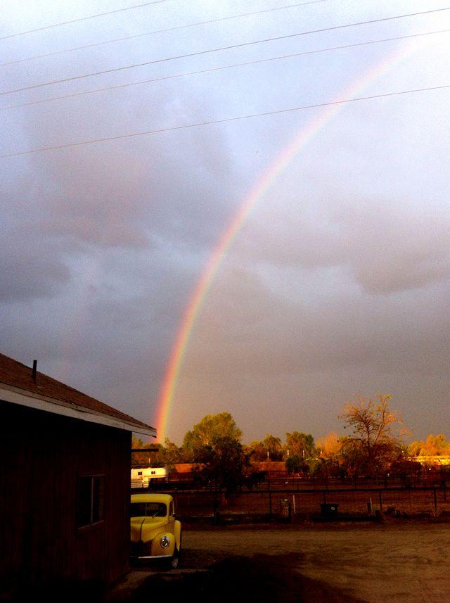 rainbownorth
