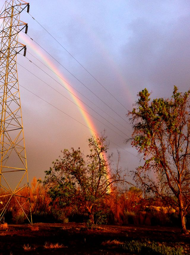 rainbowsouth