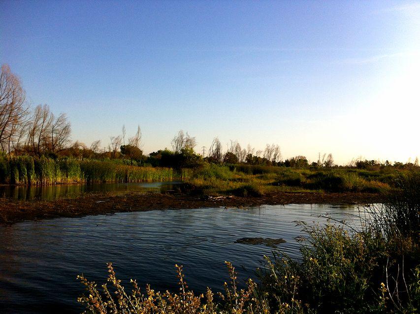 afternoonriver