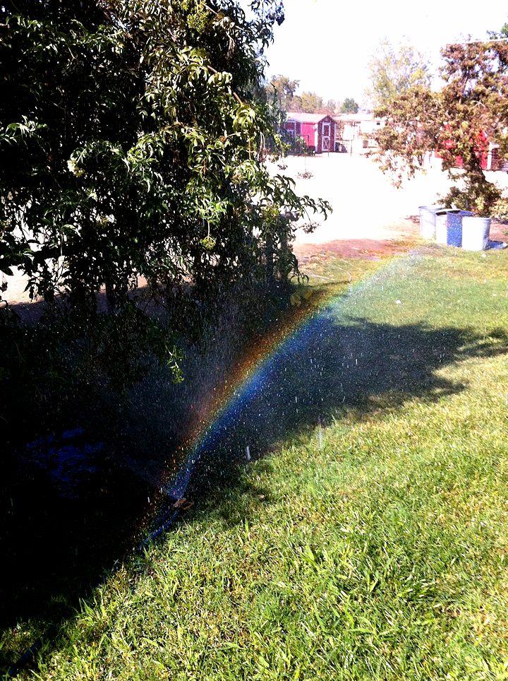 sprinklerbow